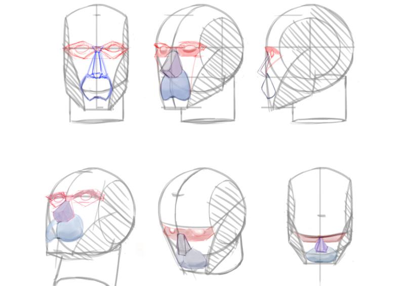 Sketchbook Gengis - Page 6 Anatom10