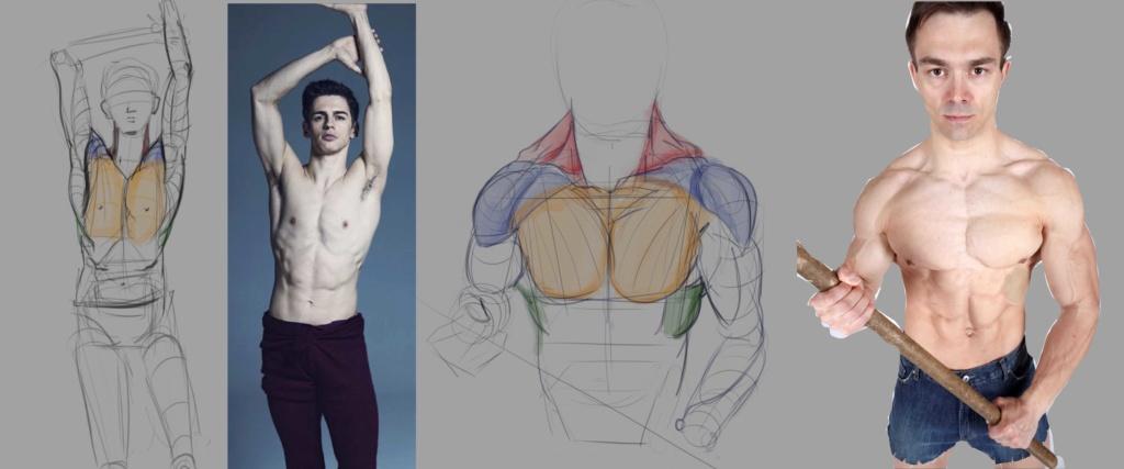 Sketchbook Gengis - Page 7 Anatom13