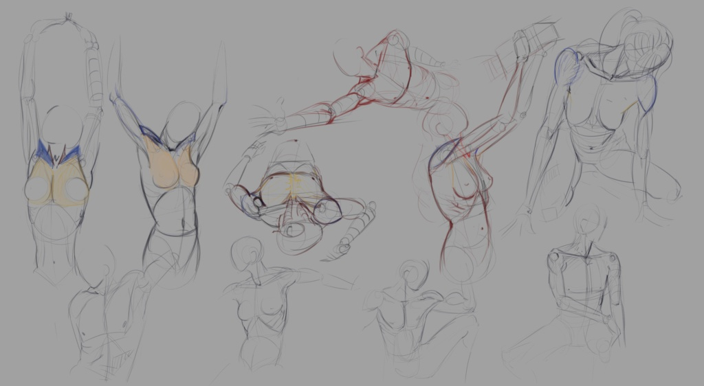 Sketchbook Gengis - Page 7 Anatom14