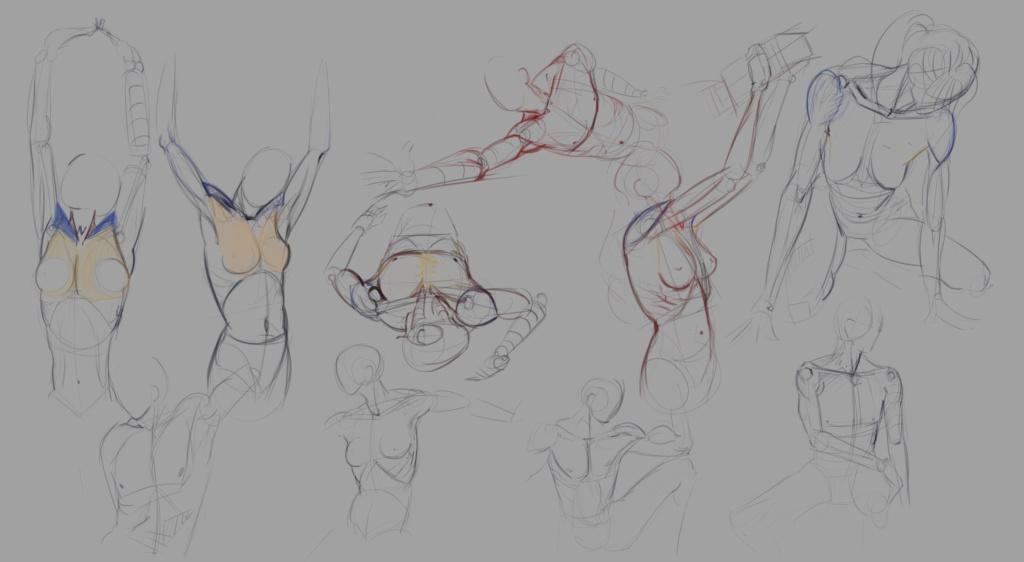 Sketchbook Gengis - Page 7 Anatom15