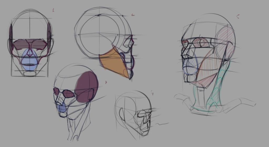 Sketchbook Gengis - Page 7 Head_011