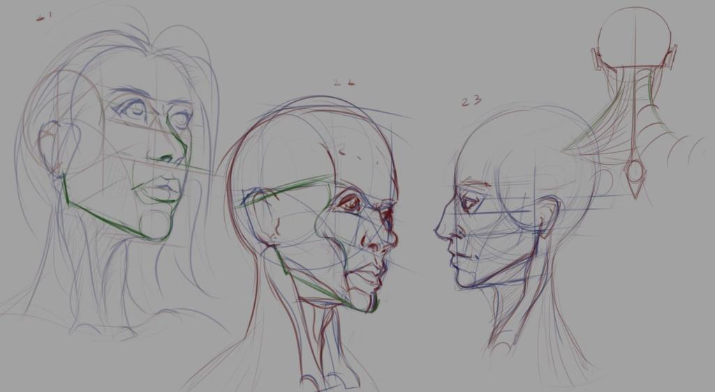 Sketchbook Gengis - Page 7 Head_015
