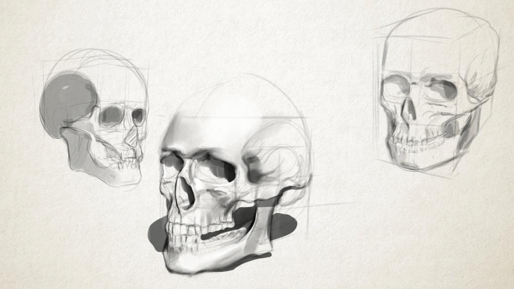 Sketchbook Gengis - Page 7 Skull_10