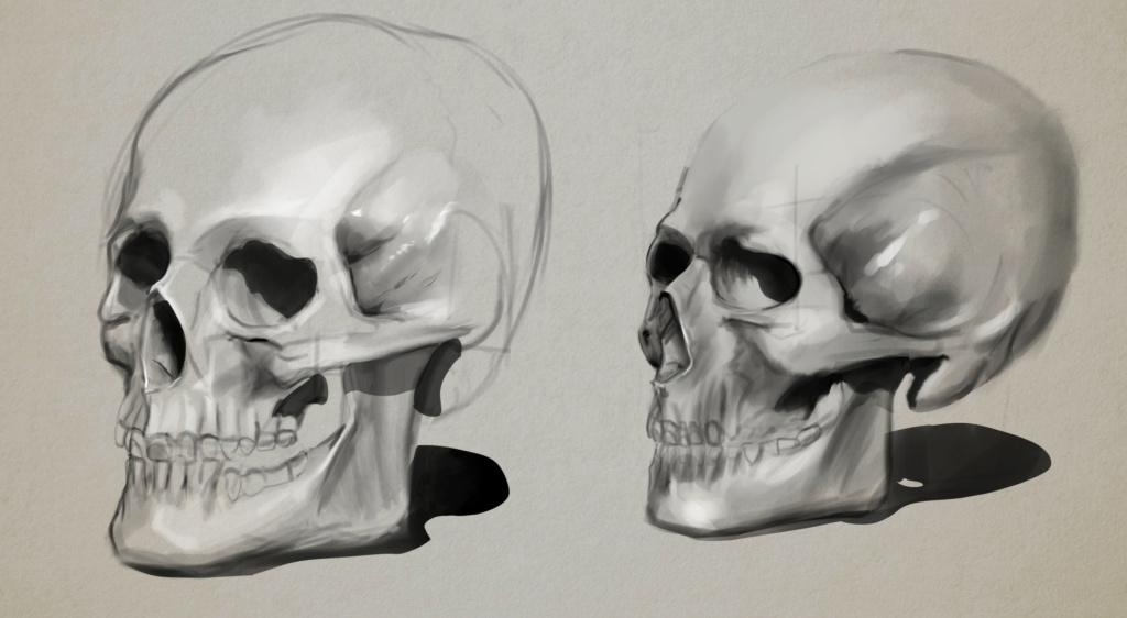 Sketchbook Gengis - Page 7 Skull_11