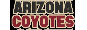 Arizona Coyotes #2 Ari10