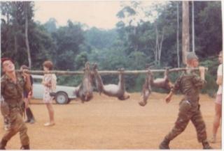 Camp général de Gaulle au Gabon 59613310