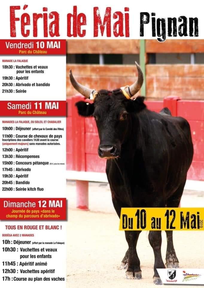 Féria de Pignan  le 12 Mai avec Franck Marcou Fb_im145