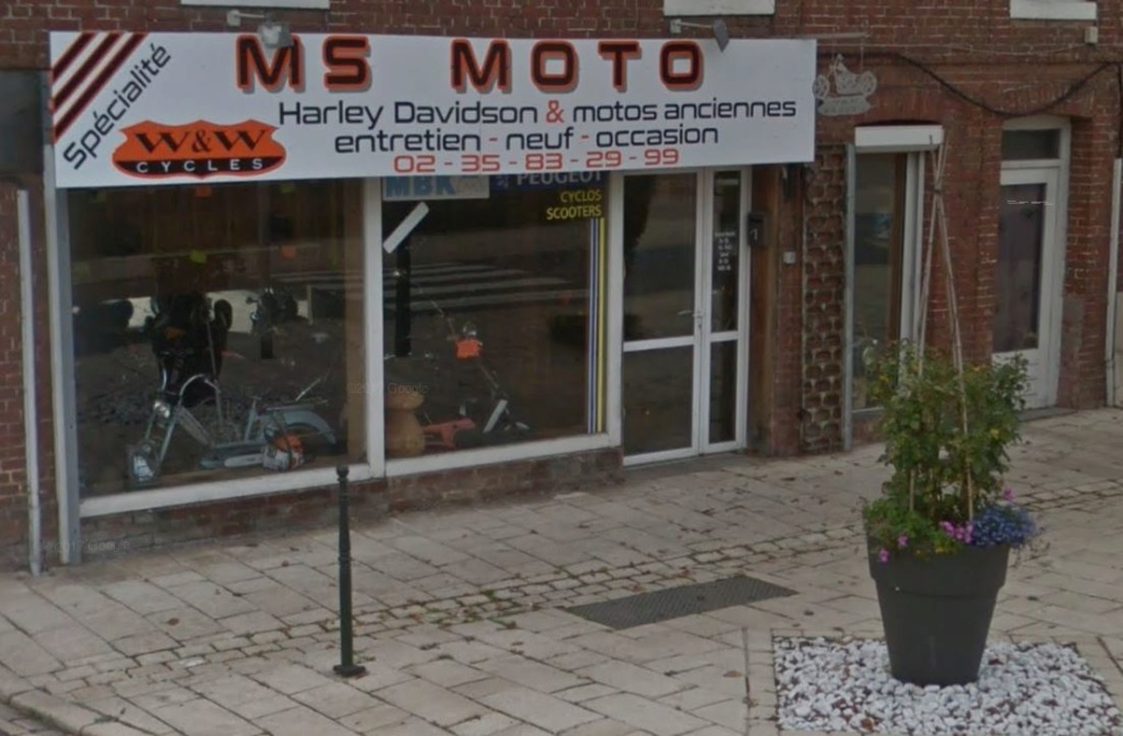 Ou trouver un gris en normandie ? Ms_mot10