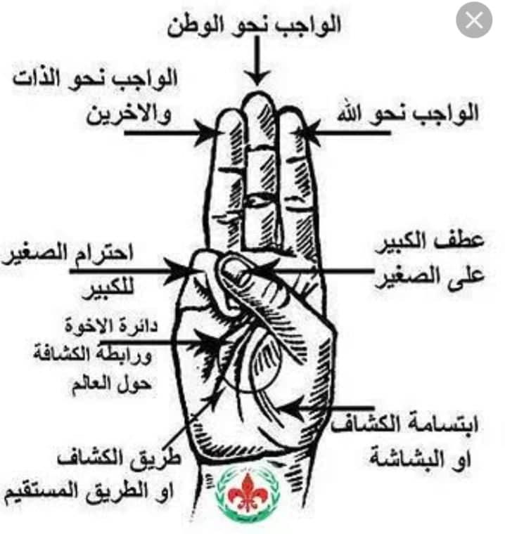 شرح العلامه الكشفيه لمرحلة البراعم 48421610