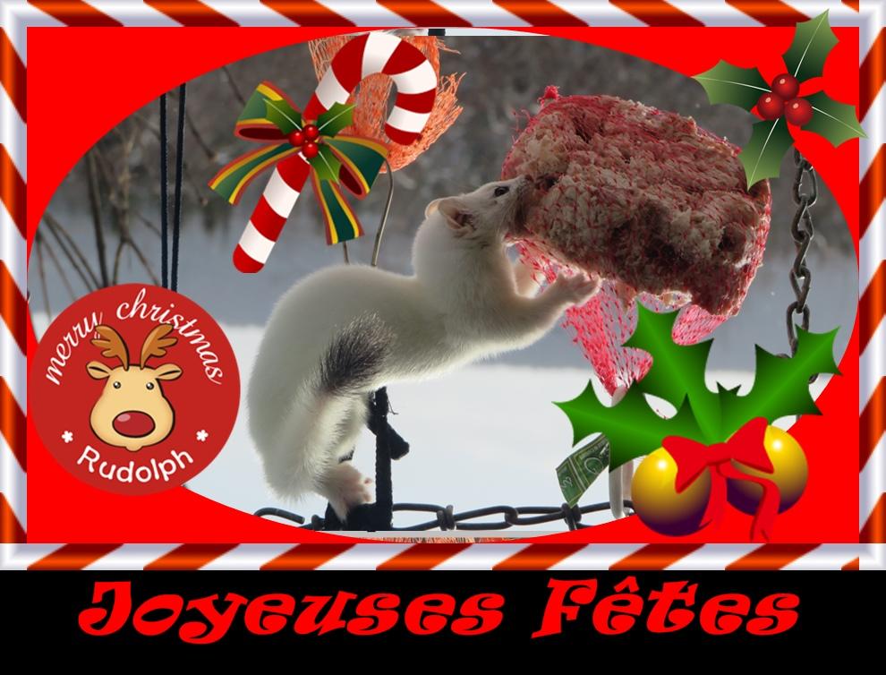 Joyeuses Fêtes à tous et... Img_2010
