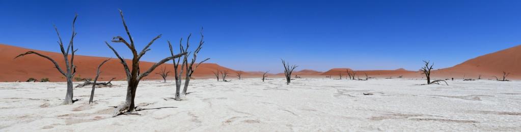 Namibie - Désert du Namib, Sossusvlei P1030312