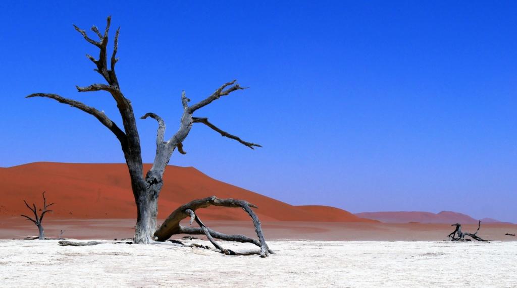 Namibie - Désert du Namib, Sossusvlei P1030313