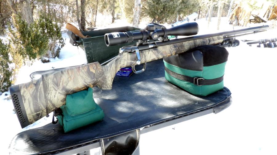 Winchester X-150 & Sabots 100_3024