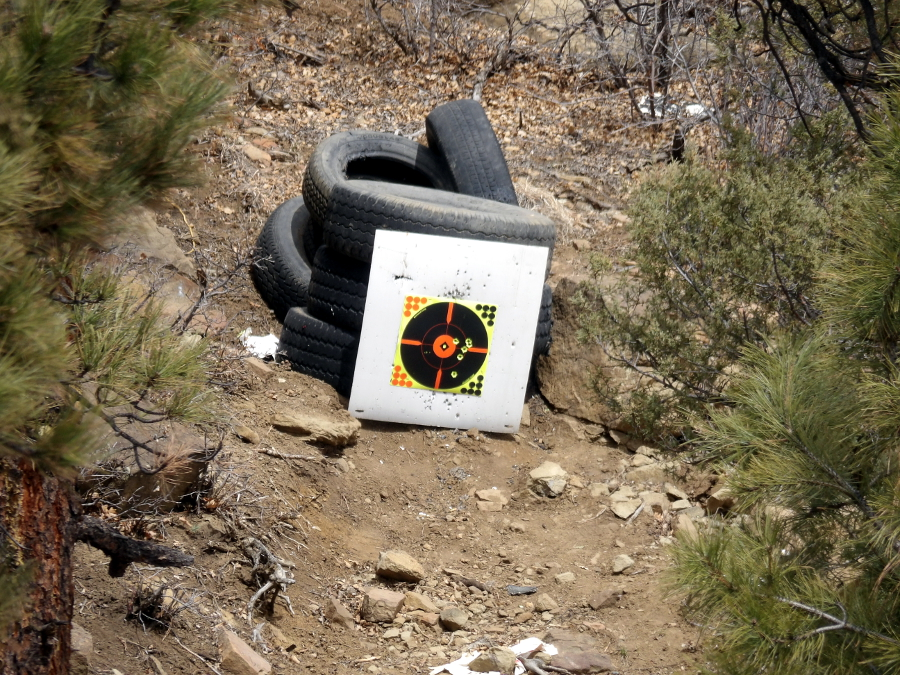 X-150 - 300gr XTP Mag & ARX bullets 100_3117