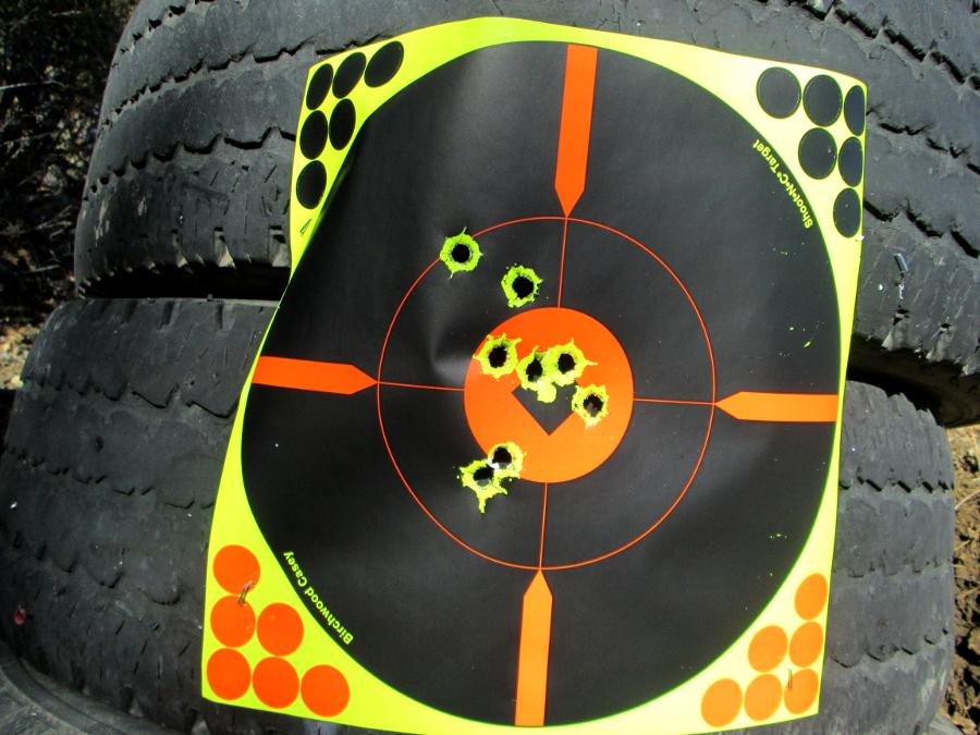 Winchester X-150 & Sabots Img_0311