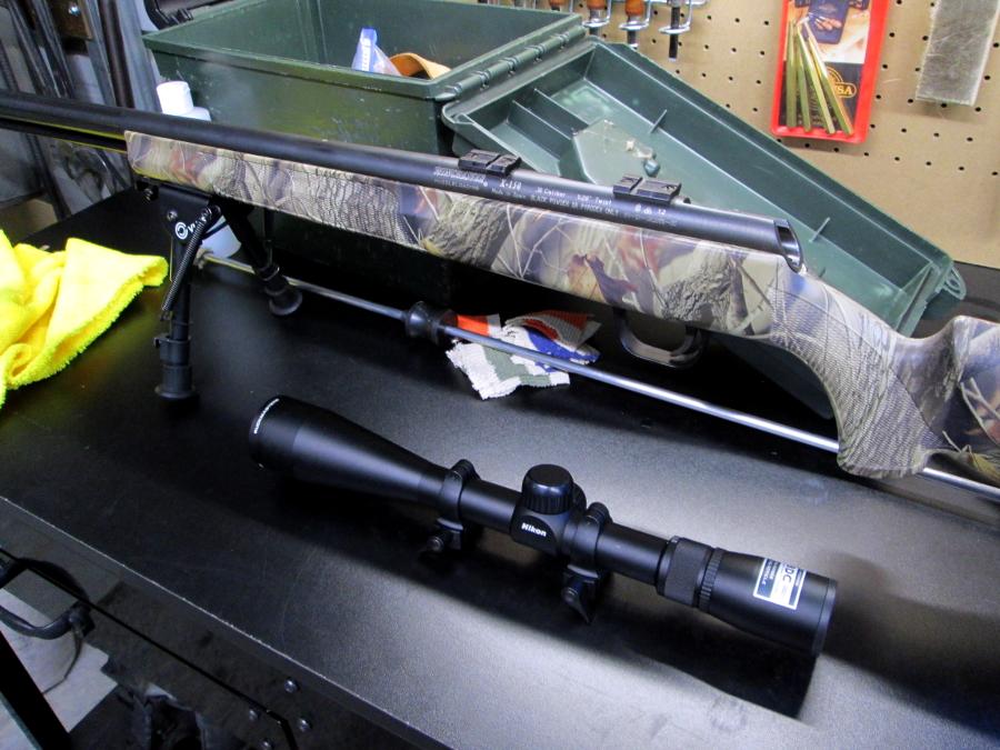 Winchester X-150 & Sabots Img_0312