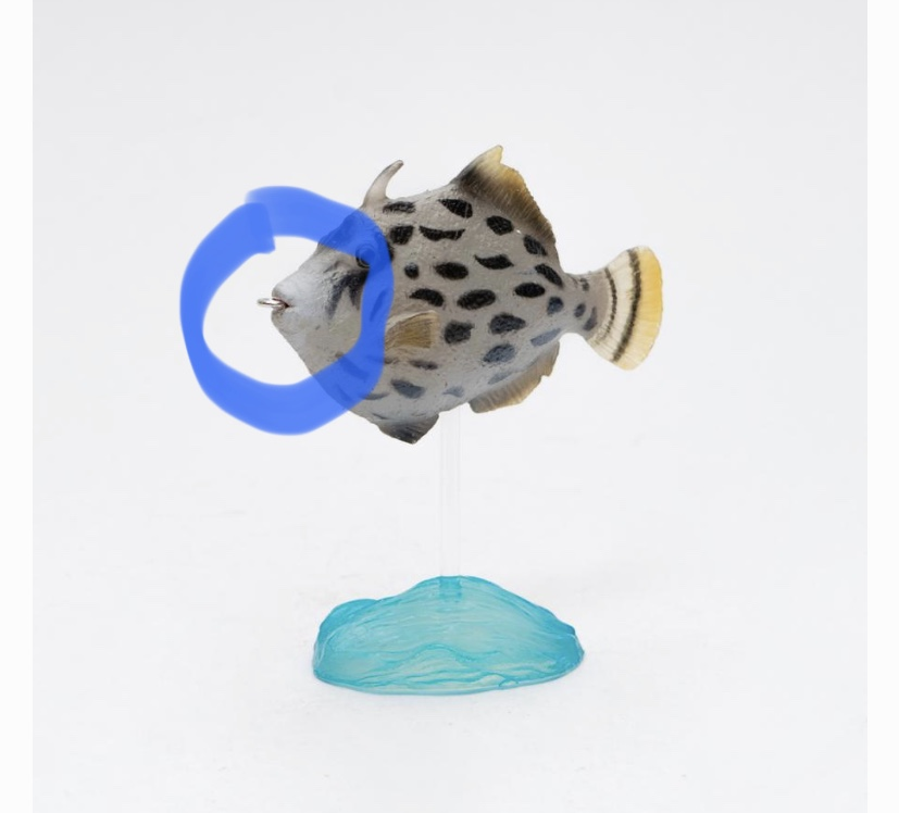 New Item of Kinto Favorite -  Aqua Fish 918e3610