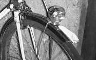 Mascotte de garde boue sur vélo de ville PEUGEOT File0010