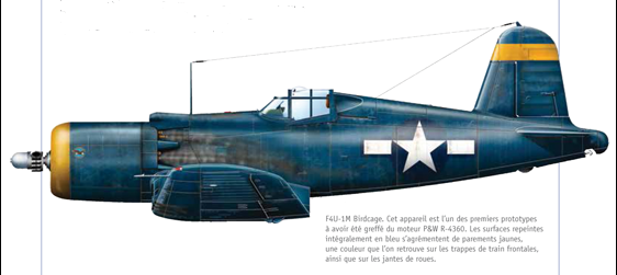 [Special Hobby & Tamiya] Goodyear F4U 1WM Corsair - Terminé 216