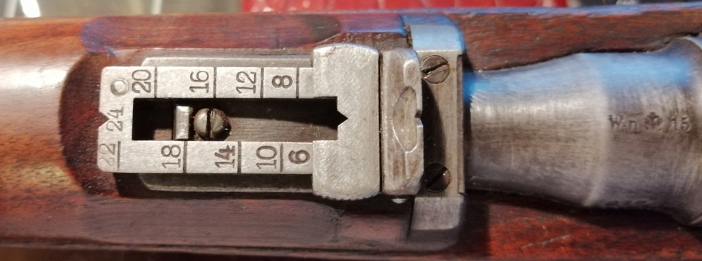 Carabine Steyr 95 Avis ? Img_2037