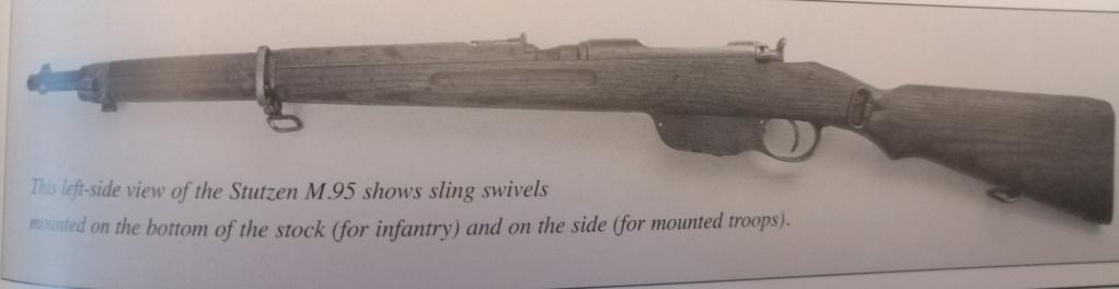 Carabine Steyr 95 Avis ? Img_2050