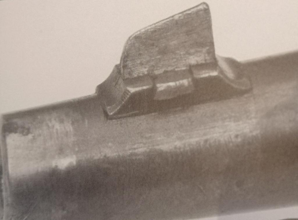 Carabine Steyr 95 Avis ? Img_2051