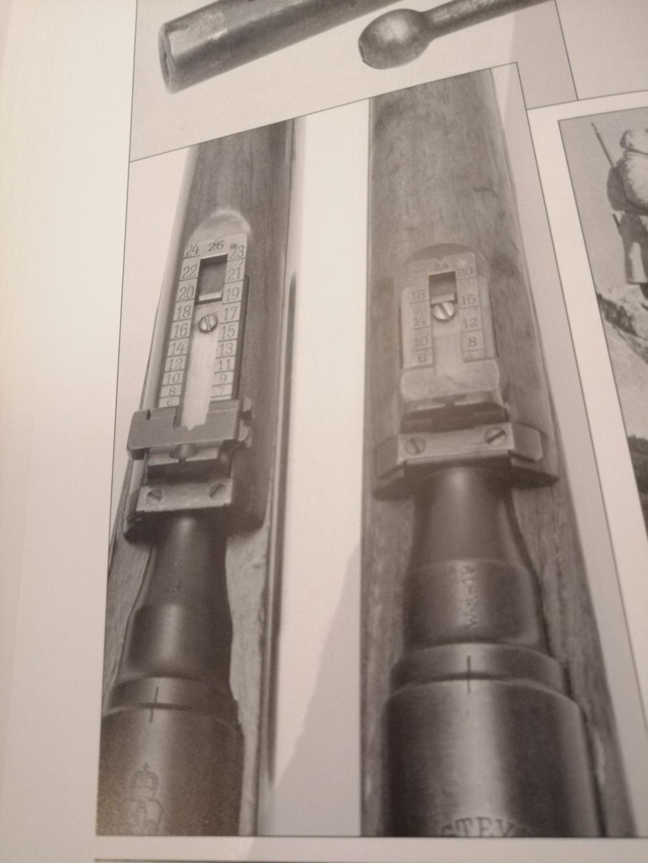 Carabine Steyr 95 Avis ? Img_2052