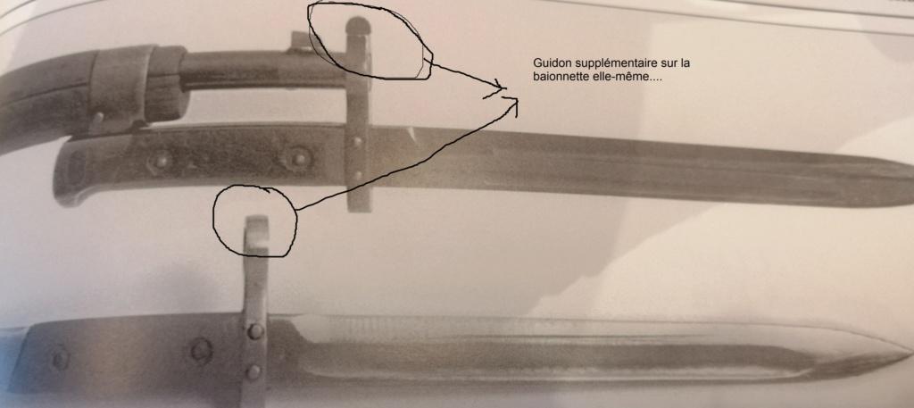 Carabine Steyr 95 Avis ? Img_2053