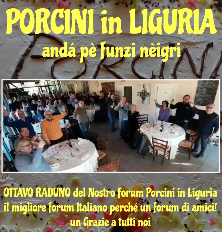 PORCINI in LIGURIA - Andare per funghi nel territorio Ligure -