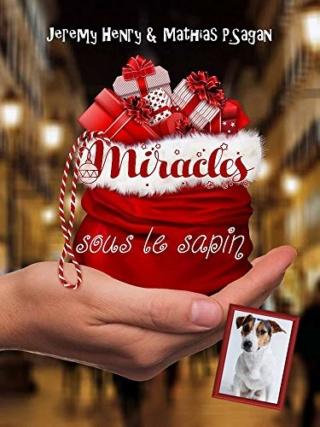 Miracles sous le sapin - Jeremy Henry & Mathias P.Sagan 51ex0910
