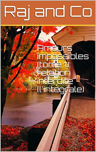 Amours impossibles T1 : Relation interdite (intégrale) - Raj and Co 51g8ef10
