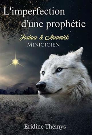 Mibigicien T0.5 : L'imperfection d'une prophétie - Eridine Thémys 51n3aq10