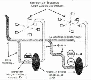 Раду Синамар - перевод книги «Забытый генезис» 1210