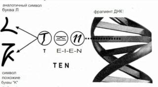Раду Синамар - перевод книги «Забытый генезис» 2811