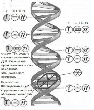Раду Синамар - перевод книги «Забытый генезис» 4011