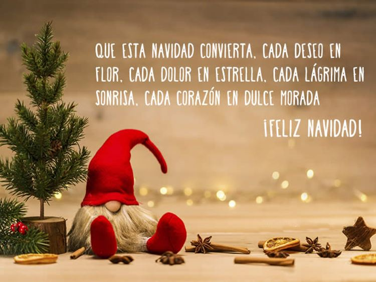 ¡¡ Felices fiestas !! Frases10