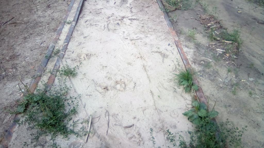 604 : Crasna - Husi Linia_25