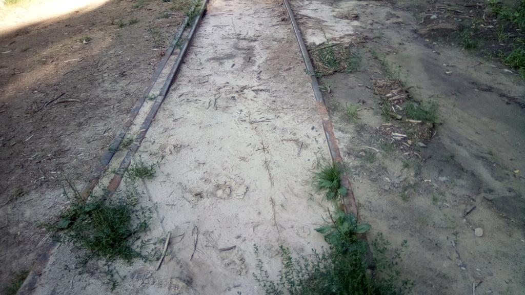 604 : Crasna - Husi Linia_26