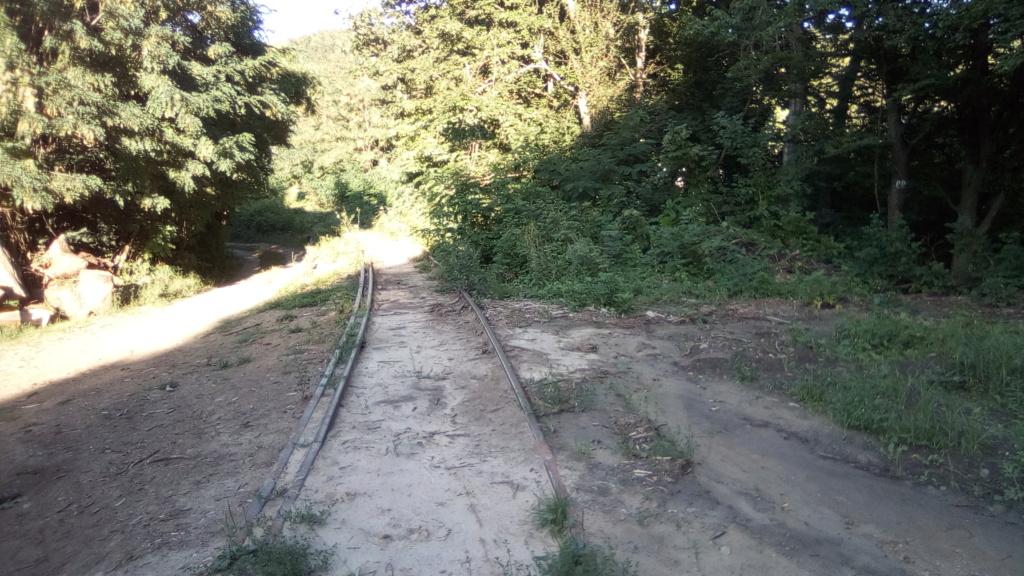604 : Crasna - Husi Linia_27