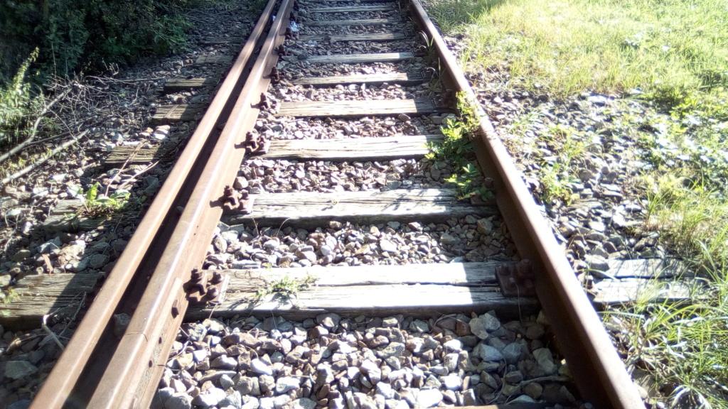 604 : Crasna - Husi - Pagina 2 Linia_31
