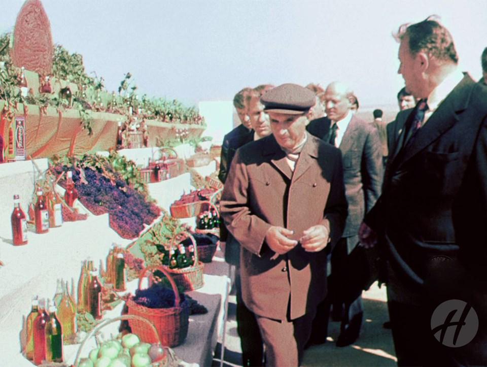Cate ceva despre situatia economica si sociala din Husi in comunism - Pagina 22 Nicola15