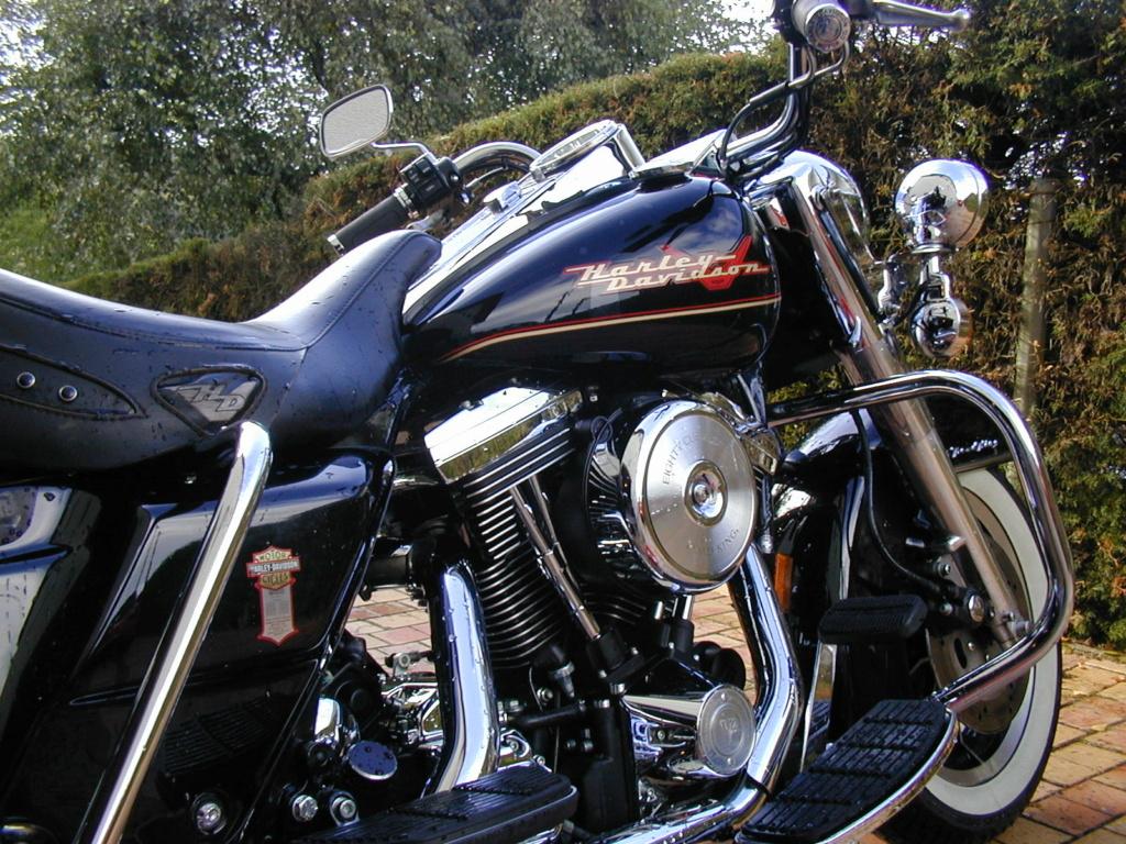 Road King uniquement, combien sur Passion-Harley  - Page 30 Derlav10