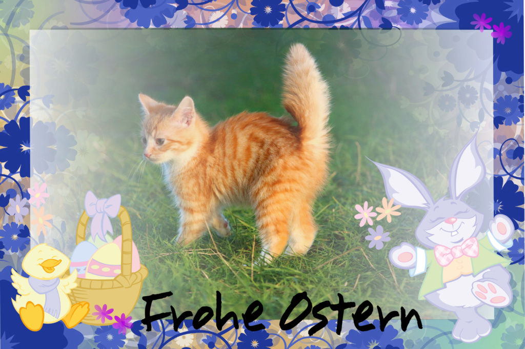 Frohe Ostern Osterk10