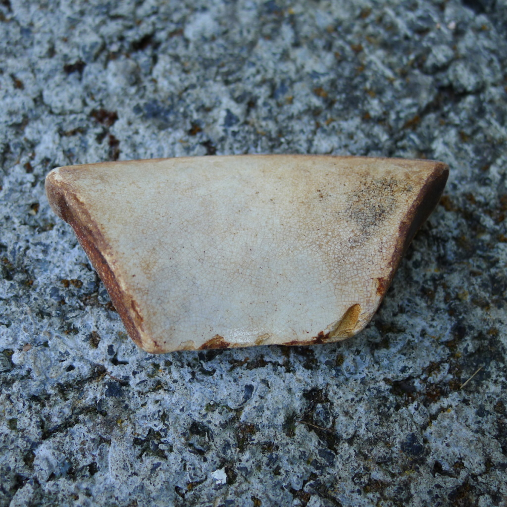 Unknown pottery from Scottish Beach P1400815