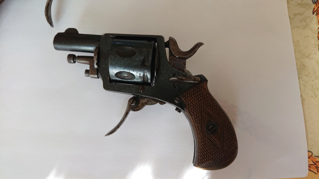 Pistolet bulldog  Dsc_0418