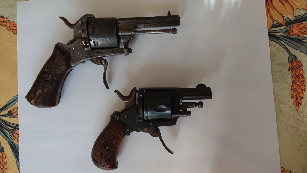 Pistolet bulldog  Dsc_0419