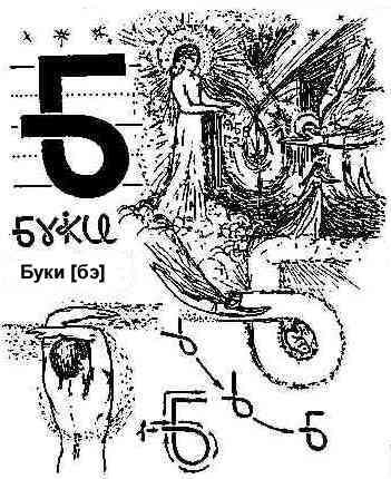 Описание Буков 16