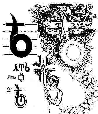 Описание Буков Aa11
