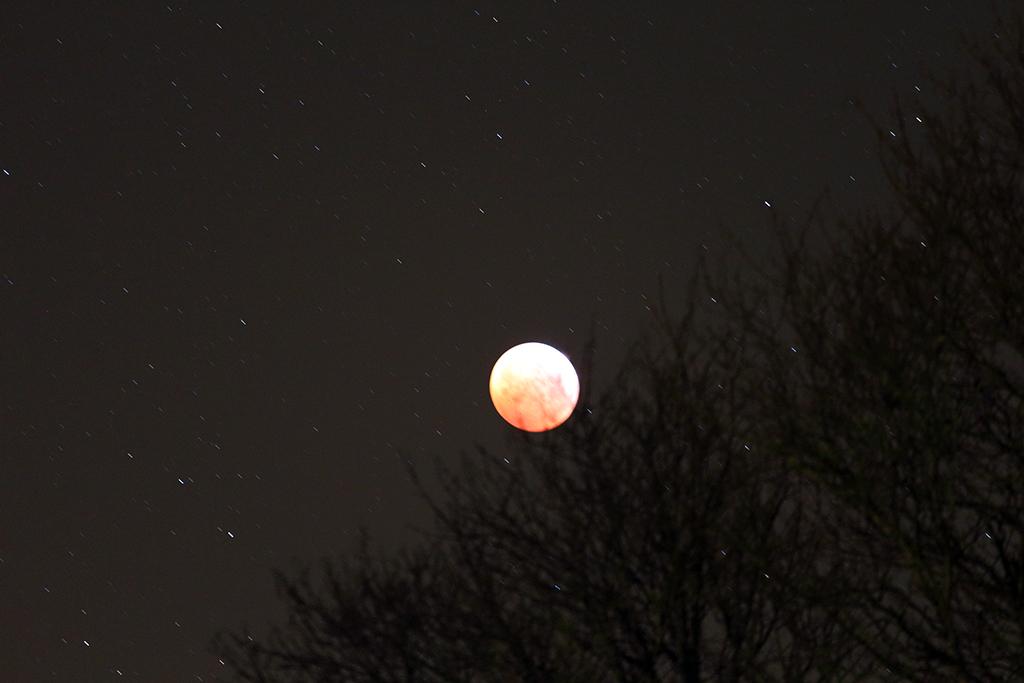 L'éclipse au 14mm et 70/200 Img_1712