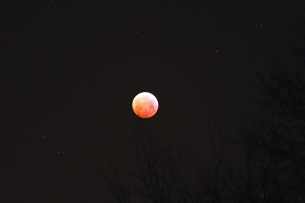 L'éclipse au 14mm et 70/200 Img_1714